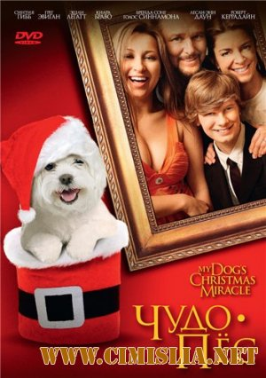 Чудо-пёс / My Dog's Christmas Miracle [2011 / DVDRip | Лицензия]