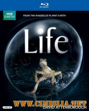 BBC: Жизнь / BBC: Life [2009 / BDRip]