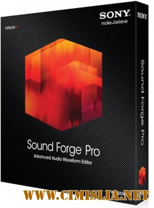 Sony Sound Forge Professional 11.0 Build 234 [RePack] [2013 / ENG / RUS]