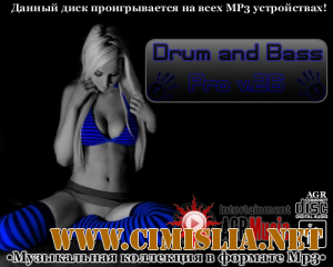 Drum and Bass Pro V.26 [2013 / MP3 / 320 kb]