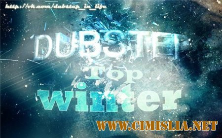 Dubstep Top (Winter)  [2013 - 2014  / MP3 / 320 kb]