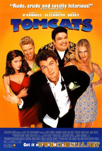 ���������� ���� / Tomcats [2001 / BDRip]