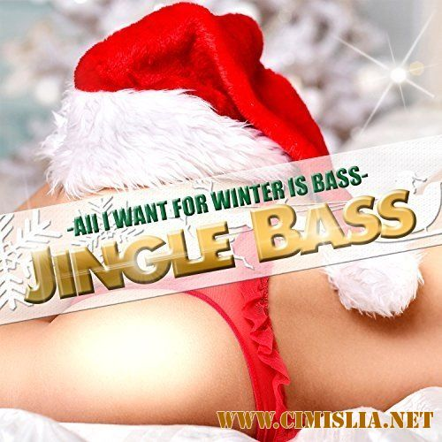 All I Want For Winter Is Bass [2016 / MP3 / 320 kb]