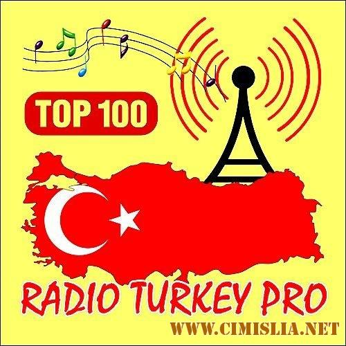Radio Turkey PRO Top 100 (Best Of Summer) [2017 / MP3 / 320 kb]