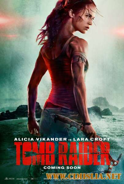 Tomb Raider: Лара Крофт / Tomb Raider [2018 / BDRip | Лицензия]