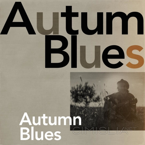 VA - Autumn Blues (2021) MP3